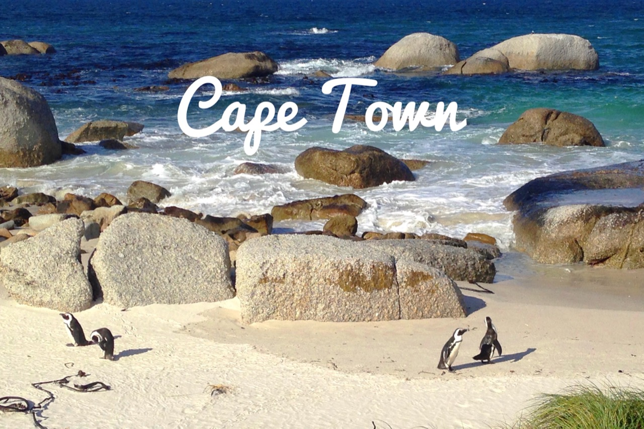 Top 5 things to do while in Cape Town